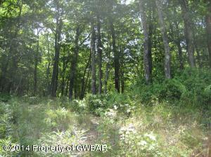 75 Twinbrook, Bear Creek, PA 18702