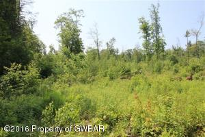 lot #2 Sweet Valley Rd., Hunlock Creek, PA 18621