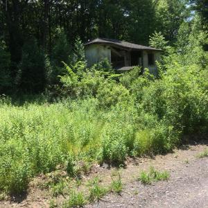 Margrum Lane, Bear Creek, PA 18702