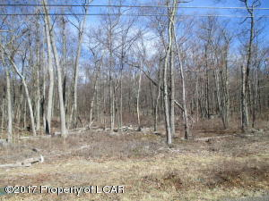 11 & 12 Bentwood, Drums, PA 18222