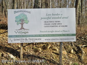 LOT 107 Dogwood Road, Drums, PA 18222