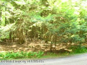 Lewis Drive, Bear Creek Village, PA 18602