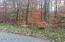 Lot 14 Mountain Ash Ln, White Haven, PA 18661