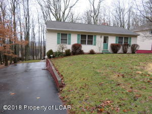 276 Snow Valley Drive, Drums, PA 18222-1139