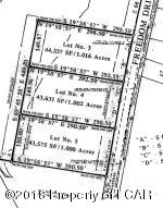 Lot 4 Freedom Road, Drums, PA 18222