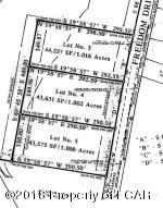 Lot 3 Freedom Road, Drums, PA 18222