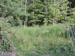 Lot 32 Stredney Road, Dallas, PA 18612