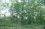 ER Lot 306 Brush Mountain Drive, Hazle Twp, PA 18202