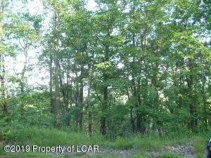 ER Lot 306 Brush Mountain Drive, Hazle Twp, PA 18202