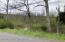 LOT #5 Freedom Road, Drums, PA 18222