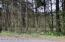 LOT #3 Freedom Road, Drums, PA 18222