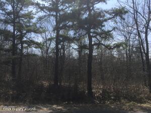 WSS Lot208 Pocahontas Drive, Hazleton, PA 18202