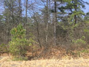 WSS Lot187 Pocahontas Drive, Hazleton, PA 18202
