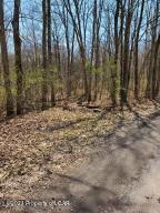 Glen Oaks Road, White Haven, PA 18661
