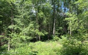 Nevel Hollow Road, Hunlock Creek, PA 18621