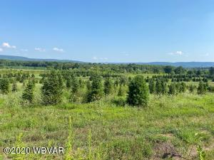 LIME BLUFF ROAD, Hughesville, PA 17737