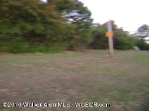 one acre facing Hwy 78W