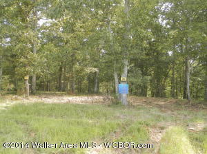 LOT #38 BRUSHY ESTATES, Arley, AL 35541
