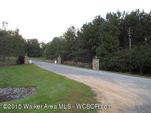 Lot # 13. Asking $9,900. Great lot in Hidden Falls Subdivision. Hidden falls is a gated community near Clear Creek Park. Private area with paved roads and street lights.