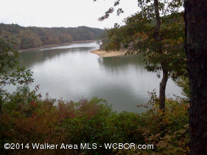 This lot offers fantastic views of Clear Creek and the Bankhead National Forest. Community boat launch, dock, and pavillion. Lot is very convenient to Curry and Jasper making shopping trips easy.
