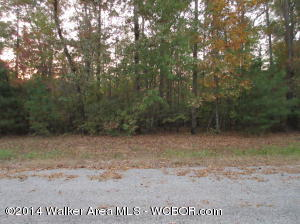 Lot #29. Beautiful off water lot in Hidden Falls Subdivision on Smith Lake. Hidden Falls is a gated and restricted community which offers security and privacy in an area you will be proud to build your home. Ask about owner financing!