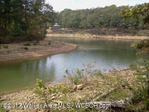 Lake Shore East lot # 25 is nestled in a culdesac in a restricted subdivision. There are many nice homes in the area. Approximately 1 acre and 160 feet of water frontage. You will love the very gentle slope to the water!!!