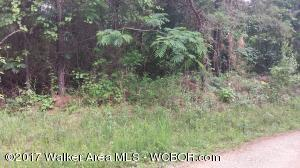 Lot #33 in Million Dollar Lake Subdivision in Vance, AL. Affordable wooded lot. Slightly sloping. 1200 square feet minimum for dwellings, both mobile homes and site built homes.  Priced at only $8500.00.
