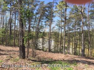 LOT # 29 HIGHLAND SHORES, Jasper, AL 35504