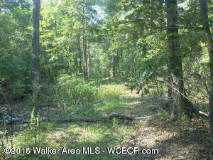 5 Acres of nice laying land in a desirable area. Multiple building sites. Power and water available. Back of property shares line with Blackwater subdivision. Upscale homes in the area. UNRESTRICTED!!! Not in the city limits.