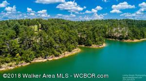 SMITH LAKE/RYAN CREEK, Phase 1 of Timber Line Subdivision, Solid rock shores, main channel, 20 minutes from the interstate, Cold springs School district, Prime location & some of the best lots available on Smith Lake. Call for more info.