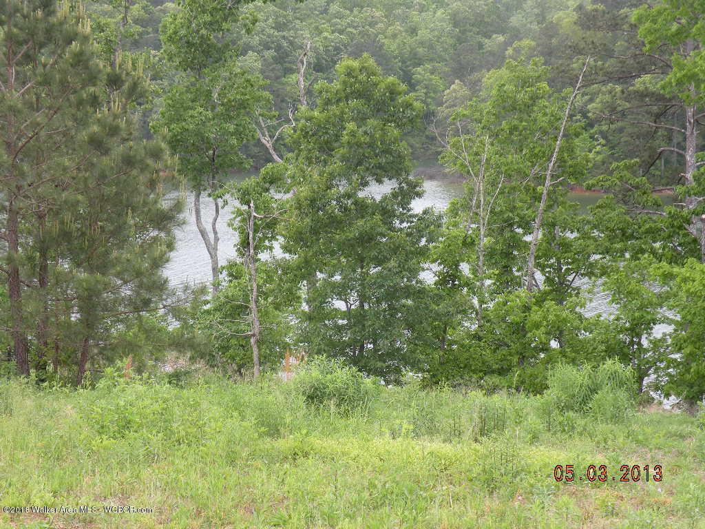 234 CO RD 907 Crane Hill AL 35053