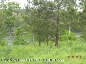 250 CO RD 907, Crane Hill, AL 35053
