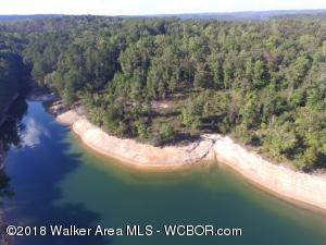 LOT 4 THE RESERVE AT EDGEWATER, Double Springs, AL 35553