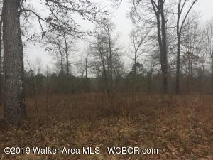 LOT 1 BLACKWATER ESTATES, Jasper, AL 35504