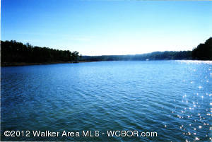 SMITH LAKE EDGEWATER PROPERTY, Double Springs, AL 35553