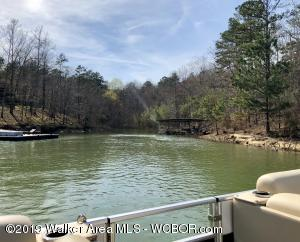 LOT 116 S. STONEY POINT Rd, Double Springs, AL 35553