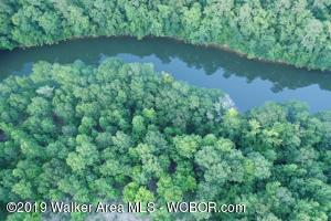 LOT 7C BANKHEAD SHORES, Double Springs, AL 35553