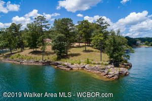 BLUFF POINTE DRIVE, Arley, AL 35541