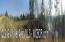 LOT # 8 C.R.8 & STILL WATER LANE, Double Springs, AL 35553