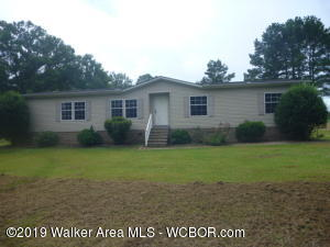 53 JOHNNY MACK LYNN Rd, Nauvoo, AL 35578