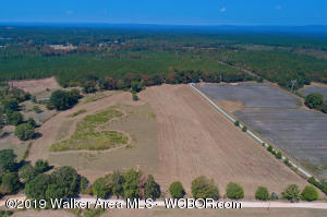 JACKSON FARM Rd, Wilsonville, AL 35186