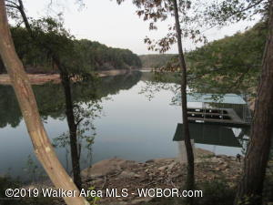 You better move quickly to get this deal on a pristine lot located in gated community on Smith Lake. Across the lake from the Bankhead National Forest. This restricted subdivision is very convenient to Jasper and Curry. Walk down to deep water and relax on the 103 feet of shoreline in Clear Creek.