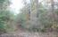 BLOOMING GROVE Rd, Jasper, AL 35504