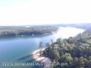 LOT 3 THE RESERVE AT EDGEWATER, Double Springs, AL 35553
