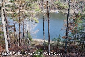 2658 HELICON RD, Arley, AL 35541
