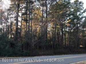CO RD 49, Beaverton, AL 35544