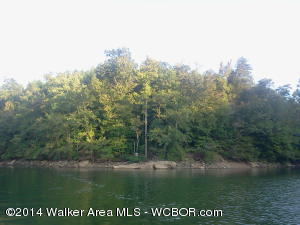 2 acre lot in Highland Shores subdivision.  This unique lake property offers expansive views of Clear Creek. Privacy and convenience to Jasper and Curry. Community Boat Launch and pavilion. Seller will even finance this lakefront hideaway.
