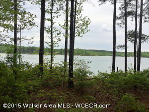 LOT 5 STILLWATER COVE, Double Springs, AL 35553