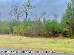 STONEY POINT Rd, Double Springs, AL 35553