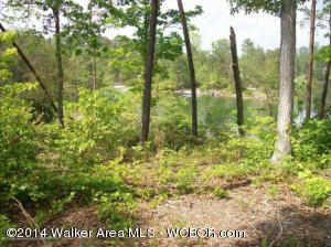 LOT 16 BEAR BRANCH COVE Rd, Arley, AL 35541